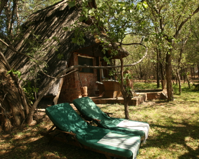 New rooms and old friends at Musango